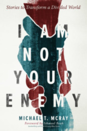 Cover of I Am Not Your Enemy